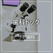 歯科ドッグ/予防歯科